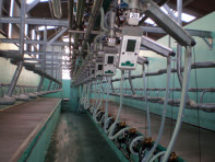 The herringbone swingover parlour installedby DairyFlow at Grange Hall Farm, Pettinain